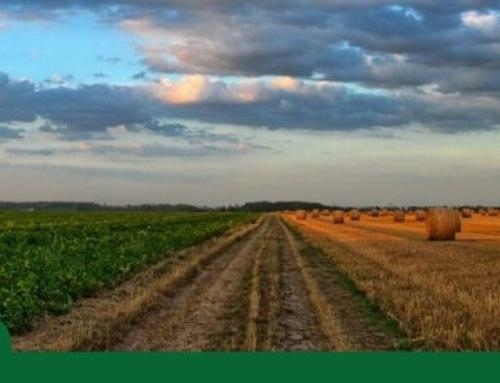 ¿Conoces la historia de los fertilizantes?
