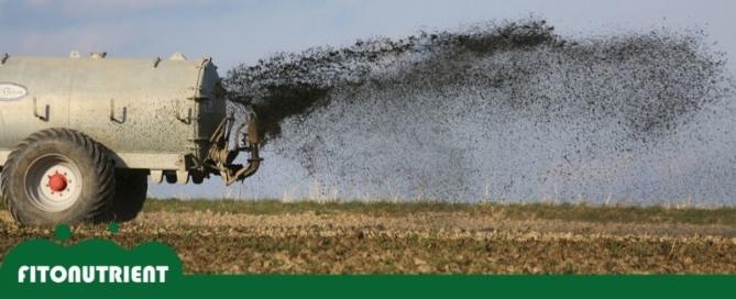 imagen-destacada-fitonutrient-blog-beneficios-fertilizantes-800x325