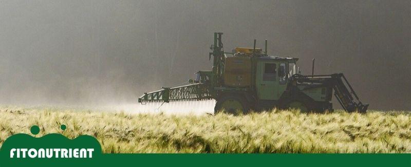 imagen-destacada-fitonutrient-pesticidas