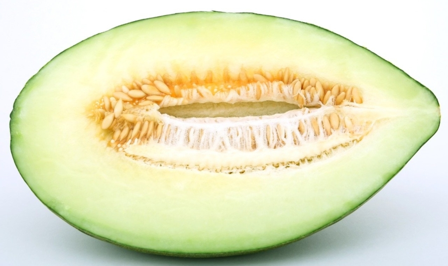 melon-fitonutrient