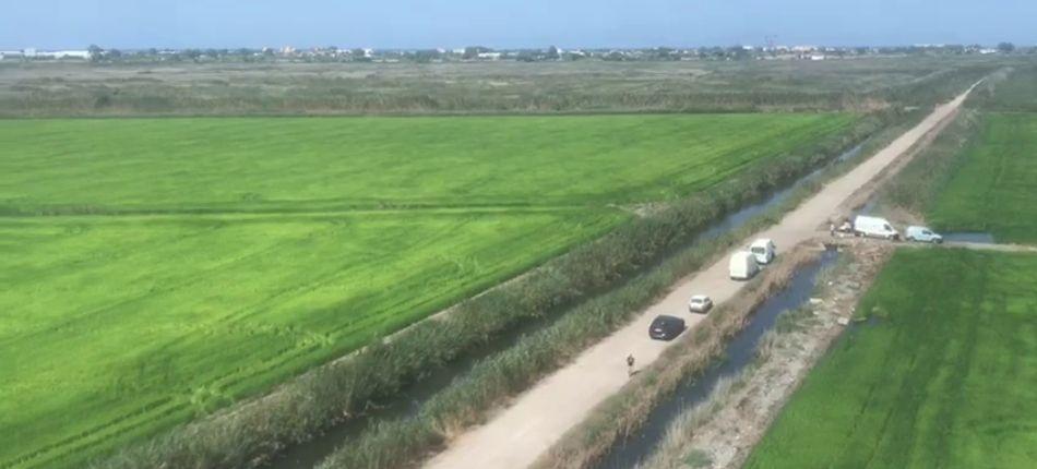 Campos de arroz en Pego tratados por Fitonutrient